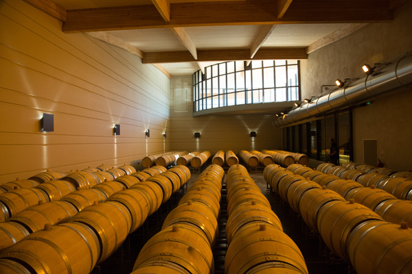 Barrel hall Domaine de Baronarques wien Limoux Languedoc