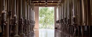 Le cuvier de Domaine de Baronarques Languedoc wine