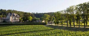 Domaine de Baronarques Vin Languedoc Limoux