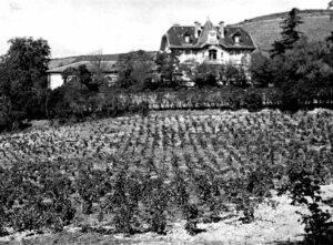 dba-history-1949-1